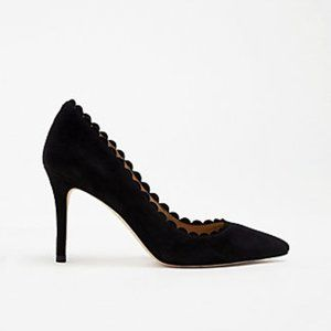 Mila Scalloped Suede Pumps In Black